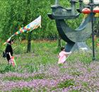 兰溪中洲公园变绿洲
